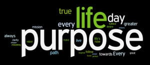 why purpose?